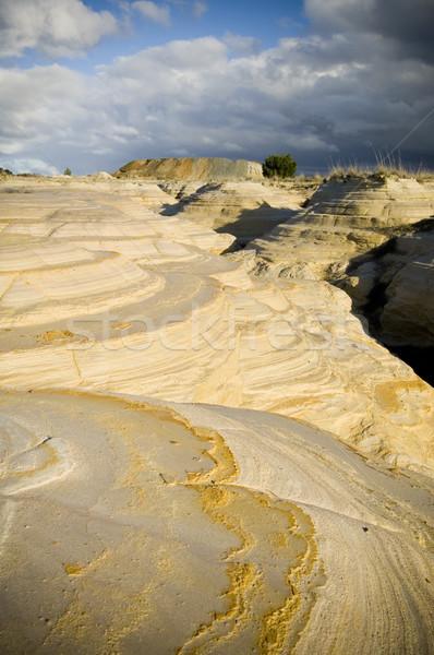 Madencilik atık ürünleri yıl altın Stok fotoğraf © THP