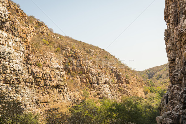 Vulture Gorge Botswana Africa Stock photo © THP