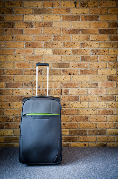 Travel Luggage Stock photo © THP