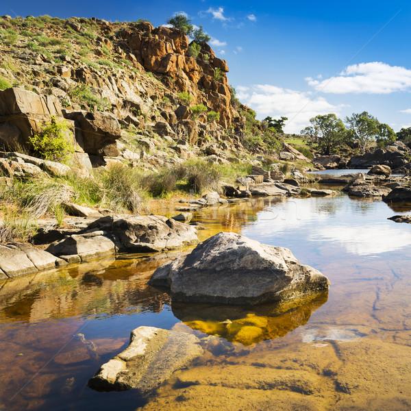 Oase mooie landelijk water voorjaar zon Stockfoto © THP