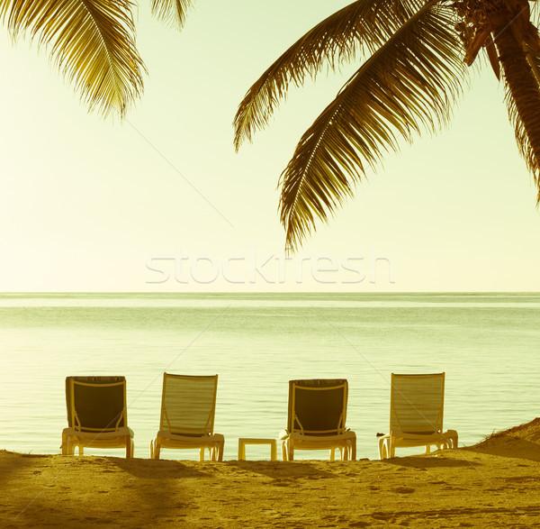Stockfoto: Vintage · zand · tropische · palmbomen · hemel