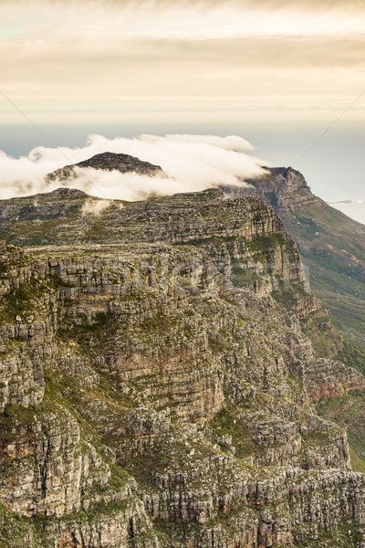 Twelve Apostles Cape Town Stock photo © THP