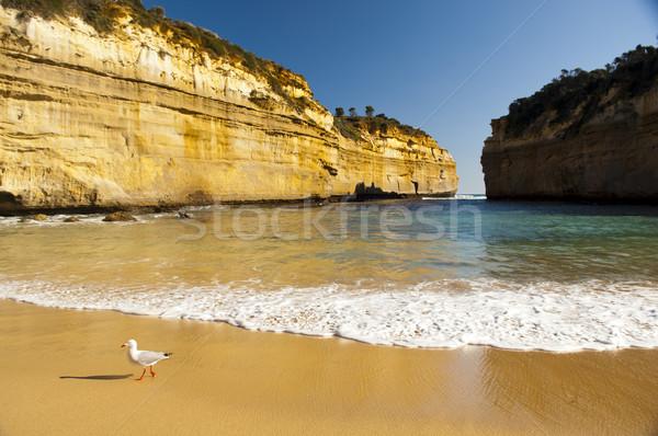 Stock fotó: Nagyszerű · óceán · út · Ausztrália · tizenkettő · tenger