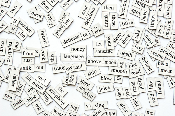 Assorted Magnetic Words Stock photo © THP