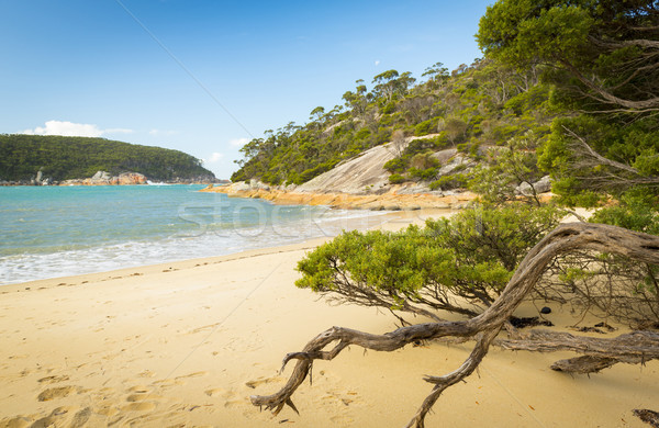 Refuge Cove Beach Stock photo © THP