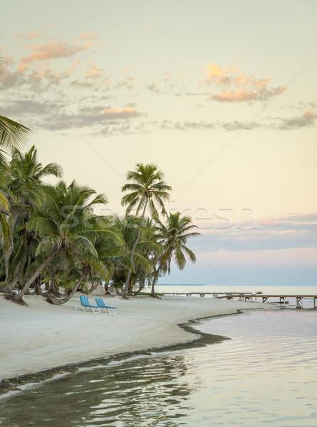 Ambergris Caye Belize Stock photo © THP