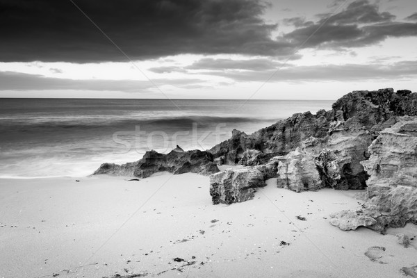 Stormy Beach Black and White Stock photo © THP