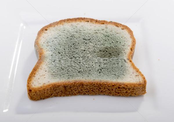 Brood groeiend groene witte zwarte Stockfoto © THP