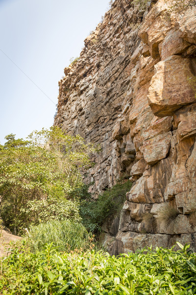 Moremi Gorge Botswana  Stock photo © THP