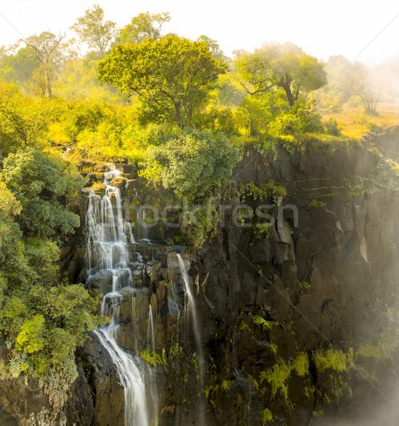 Victoria Falls Detail Stock photo © THP
