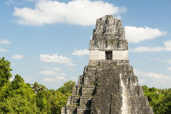 Tikal Guatemala Ruins Stock photo © THP