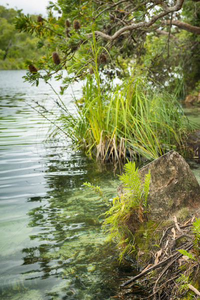 湖 エッジ 表示 青 北 島 ストックフォト © THP