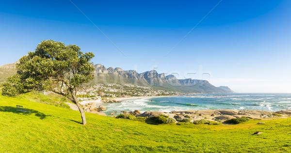 Кейптаун ЮАР синий Панорама пляж природы Сток-фото © THP