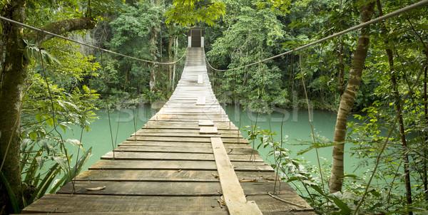Köprü rio park Belize asılı nehir Stok fotoğraf © THP