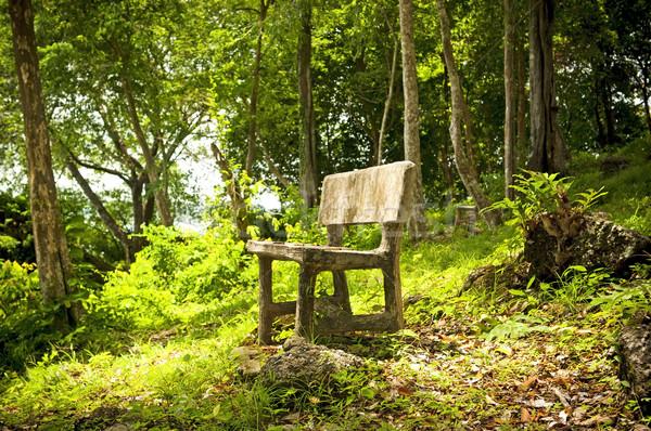 Erdő ülés üres fantázia fa kert Stock fotó © THP