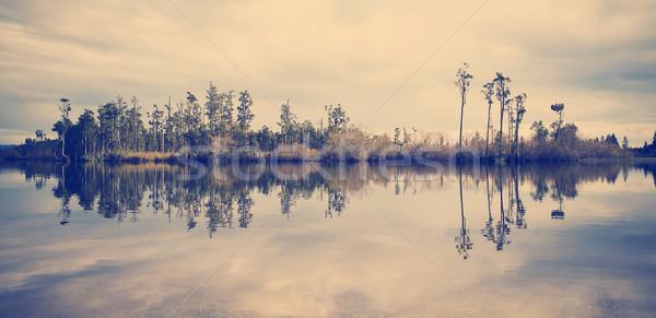 Foto stock: Perfeito · lago · floresta · ilha · árvores