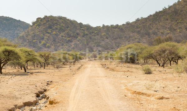 Botswana onverharde weg afrika afstandsbediening landelijk reizen Stockfoto © THP