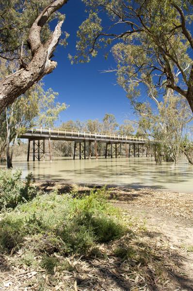 Darling River, Australia Stock photo © THP