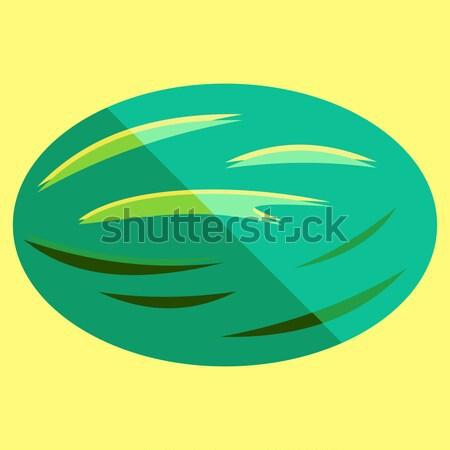 Sandía vector simple minimalismo arte estilo Foto stock © THP