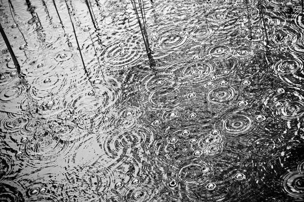 Rain on Pond Stock photo © THP