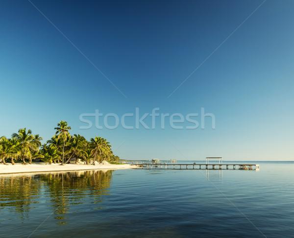 Stock fotó: Karib · tengerpart · Belize · trópusi · uticél · víz