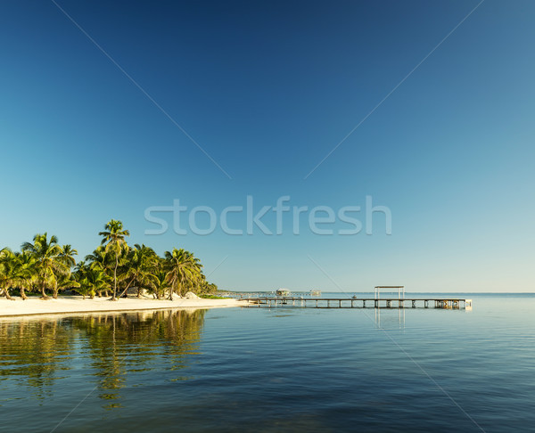 Karib tengerpart Belize trópusi uticél víz Stock fotó © THP