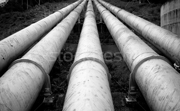 Massive Pipes Stock photo © THP