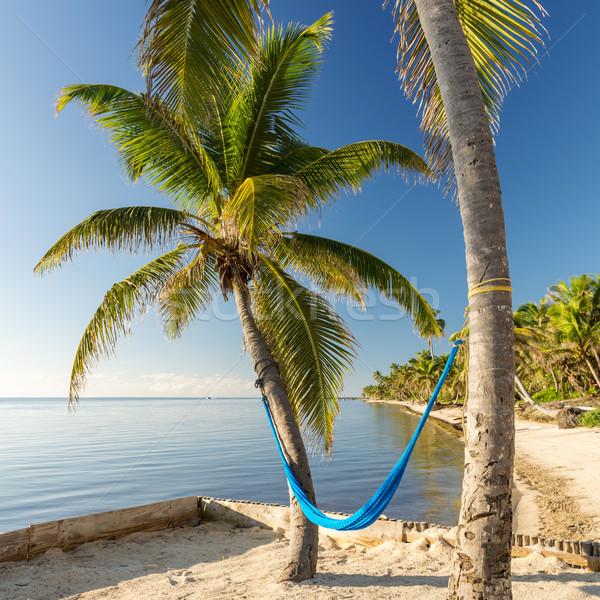 Tropical Island Beach With Hammock Stock photo © THP