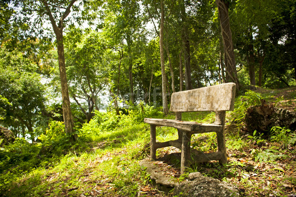 лес сиденье пусто фантазий древесины саду Сток-фото © THP