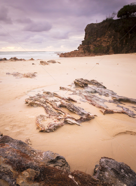Deadmans Beach Stradbroke Island Stock photo © THP