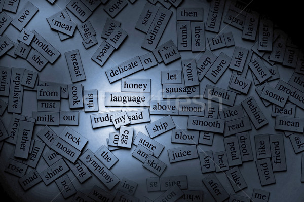 Magnetic Words Stock photo © THP