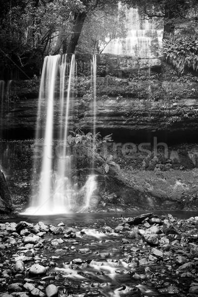 Russel Falls, Tasmania Stock photo © THP