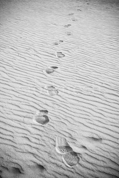 Footprints In Sand Stock photo © THP