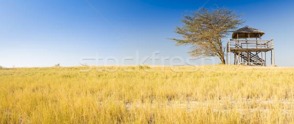 Africaine Safari hutte bois toit Photo stock © THP