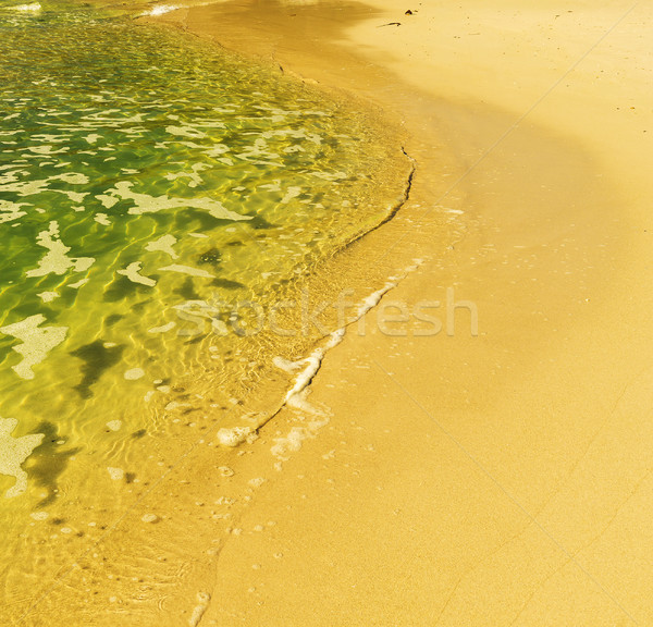 South African Shoreline Stock photo © THP