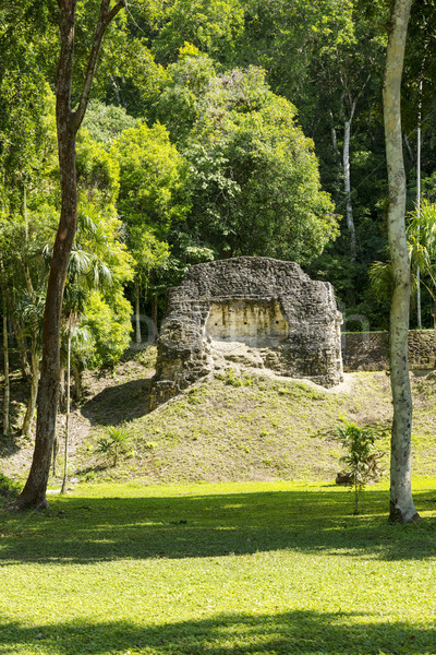 Tikal Mayan Buildings Stock photo © THP