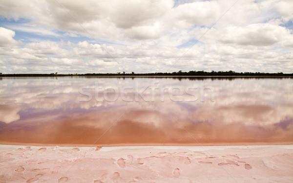 Pink Lake Stock photo © THP