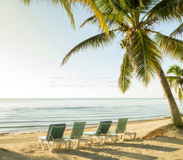 Tropical Island Vacation Stock photo © THP