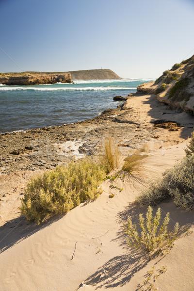 óceán ki lát félsziget Dél-Ausztrália tenger Stock fotó © THP