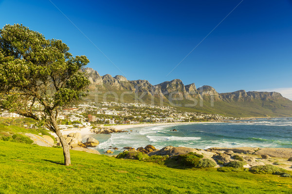 Кейптаун ЮАР синий пляж природы морем Сток-фото © THP