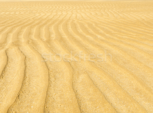 Sand Ripple Background Stock photo © THP
