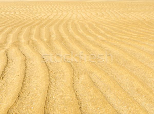 Kum dalgalanma model doğal plaj doku Stok fotoğraf © THP