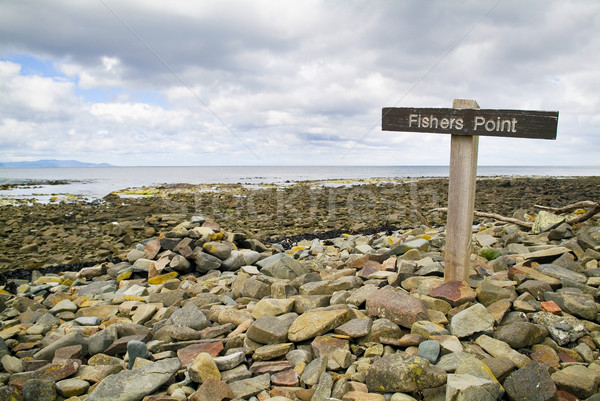 Punkt podpisania ryb ocean rock skał Zdjęcia stock © THP
