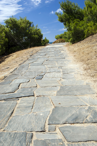Stone Pathway Stock photo © THP