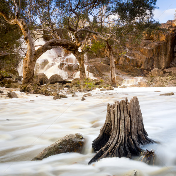 Waterfall Stock photo © THP