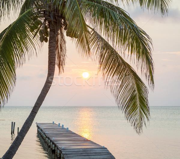 Tropical Sunrise Jetty Stock photo © THP