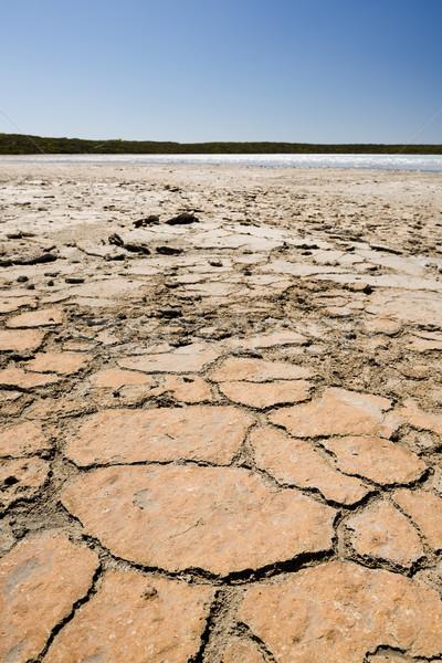 Cracked Ground Stock photo © THP