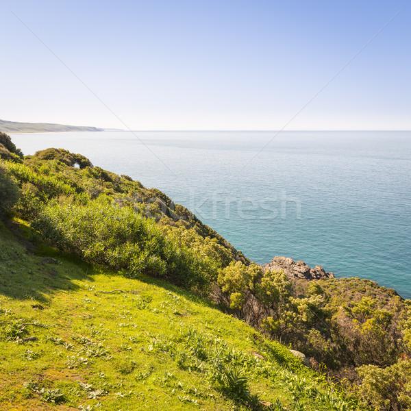 Sul da austrália costa paisagem australiano sul Foto stock © THP