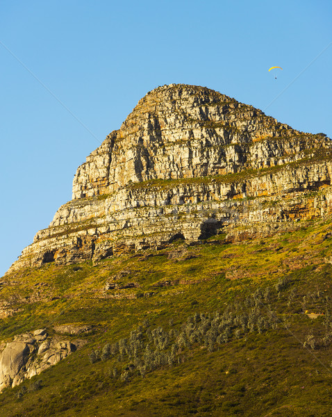 Lion's Head Peak In Cape Town, South Africa Stock photo © THP