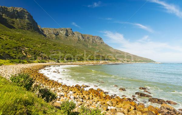 Tengerpart Dél-Afrika csúcs vezetés Fokváros Afrika Stock fotó © THP